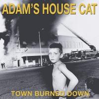 Adam's House Cat - Town Burned Down Yellow