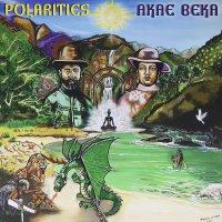 Akae Beka  &  Zion I Kings - Polarities