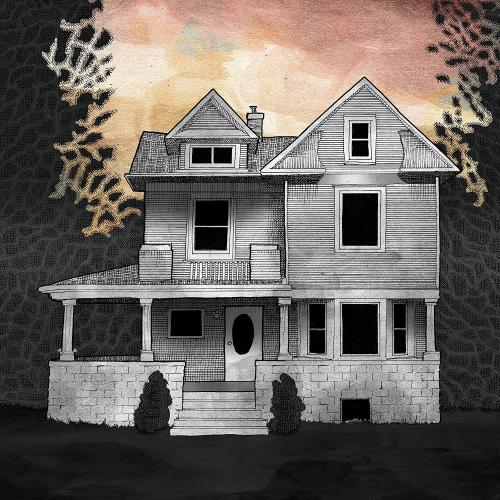 Alison Chesley / Steve Albini / Tim Midyett -Girl On The Third Floor