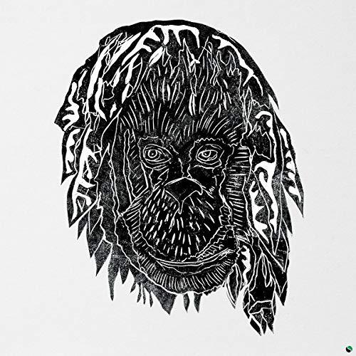 Alpha Steppa - Raise The Ark