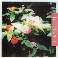 Amulets -Blooming