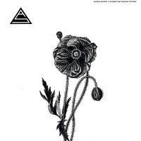 Ancient Shapes - Flower That Wouldn't Bloom