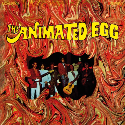 Animated Egg - Animated Egg