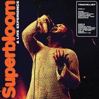 Ashton Irwin -Superbloom: A Live Experience