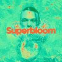 Ashton Irwin -Superbloom