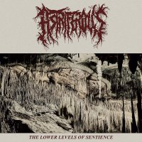 Astriferous -The Lower Levels Of Sentience
