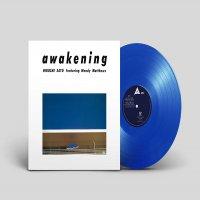 佐藤博 -Awakening