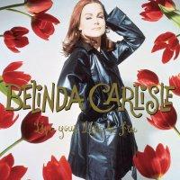 Belinda Carlisle - Live Your Life Be Free: 30Th Anniversary