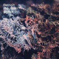 Benoit Pioulard - Sylva