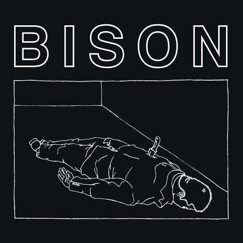 Bison - One Thousand Needles