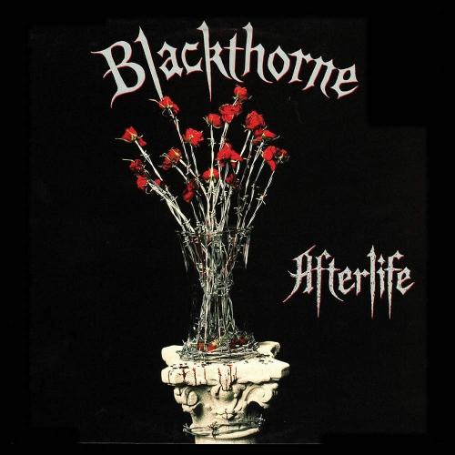 Blackthorne -Afterlife