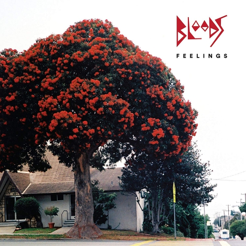 Bloods - Feelings