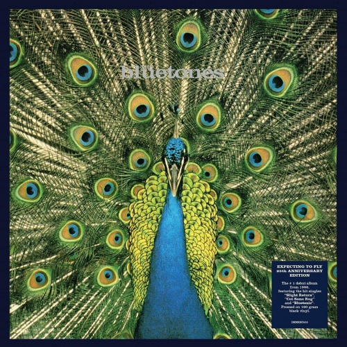 Bluetones - Expecting To Fly: 25Th Anniversary
