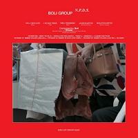 Boli Group - N.p.d.s.