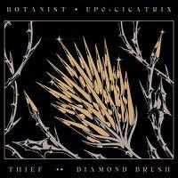 Botanist - Cicatrix / Diamond Brush