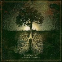 Botanist -Photosynthesis