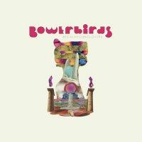 Bowerbirds -Becalmyounglovers