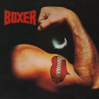Boxer -Absolutely