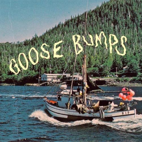 Boyscott -Goose Bumps