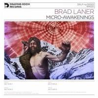 Brad Laner -Micro-Awakenings