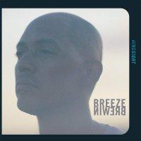 Breeze Brewin -Hindsight