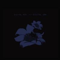 Bright Eyes -Digital Ash In A Digital Urn Remastered