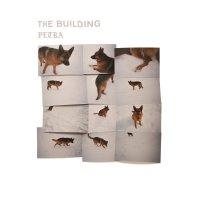 Building -Petra [Lp]