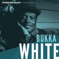 Bukka White - Worried Blues