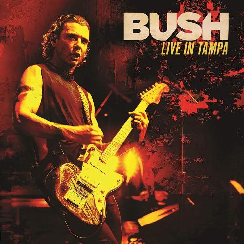 Bush -Live In Tampa