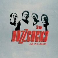 Buzzcocks -30 Live In London