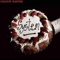 Callum Easter - System