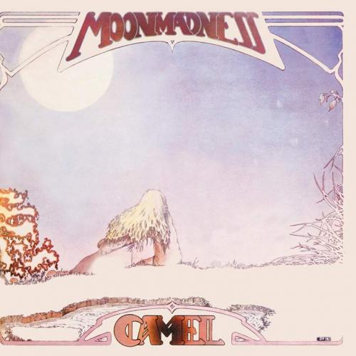 Camel - Moondances