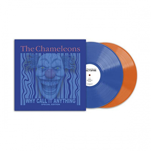 Chameleons - Why Call It Anything