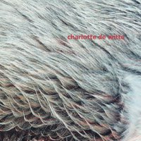 Charlotte De Witte - Vision
