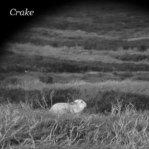Crake - Enough Salt (For all dogs b / w gef)
