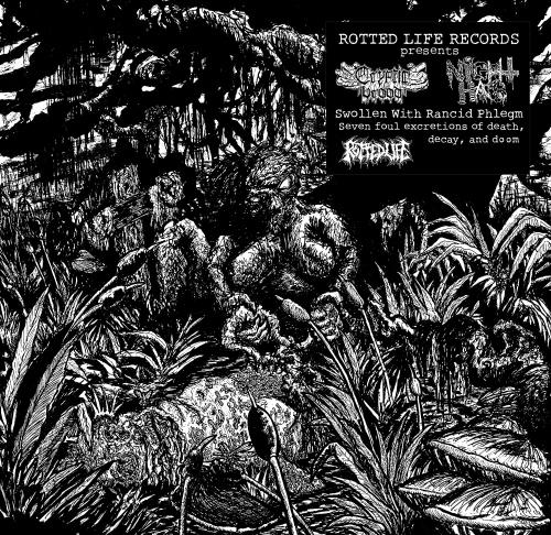 Cryptic Brood  &  Night Hag -Swollen With Rancid Phlegm