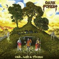 Dark Forest - Oak, Ash & Thorns