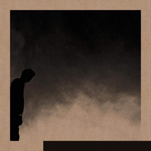 David Allred -Felt The Transition