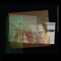 David Grubbs & Nikos Veriotis -The Harmless Dust