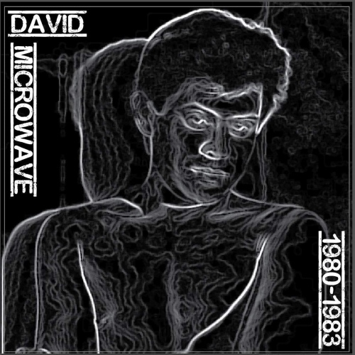 David Microwave - 1980-83