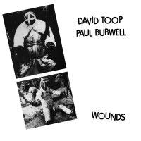 David Toop / Paul Burwell -Wounds