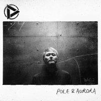 Discharming Man - Pole & Aurora