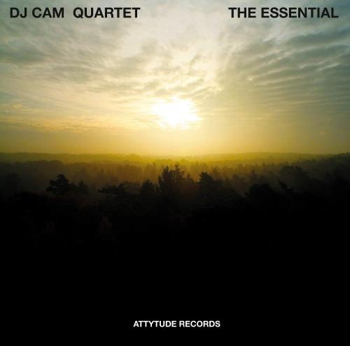 Dj Cam Quartet - The Essential