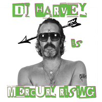 Dj Harvey -Dj Harvey Is The Sound Of Mercury Rising Vol Ii / Various