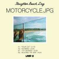 Dog Slaughter Beach - Motorcycle.lpg