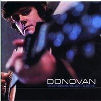 Donovan -What's Bin Did & What's Bin Hid (translucent blue vinyl)