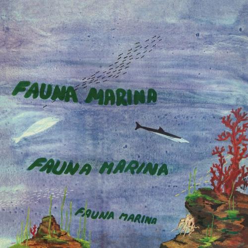 Egisto Macchi - Fauna Marina