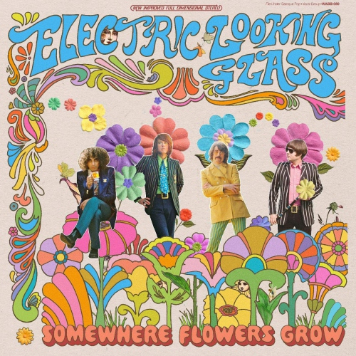 Electric Looking Glass -Somewhere Flowers Grow