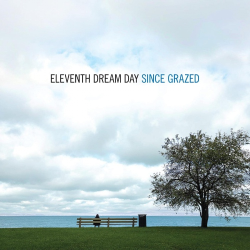 Eleventh Dream Day -Since Grazed