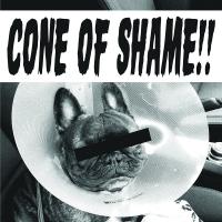 Faith No More - Cone Of Shame Clear